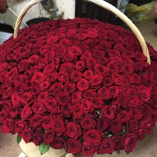 Купить на заказ 1001 роза с доставкой в Есике