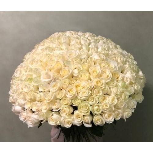 Купить на заказ 201 роза с доставкой в Есике