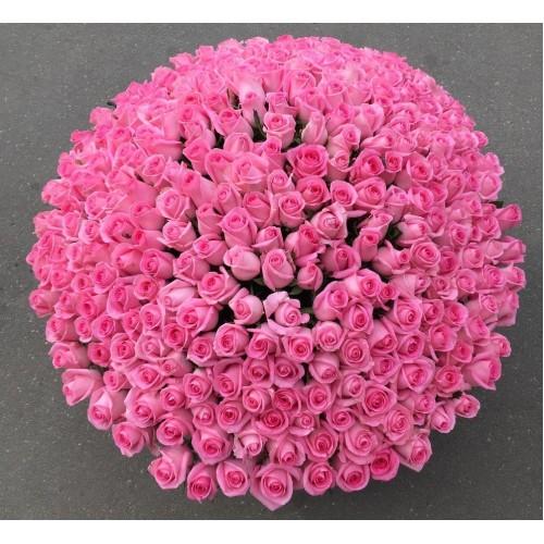 Купить на заказ 501  роза с доставкой в Есике